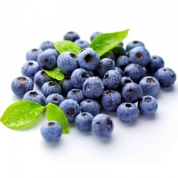 Blueberry e liquid 10ml